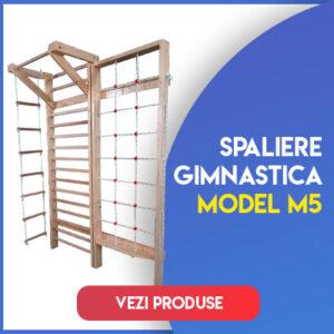 Model M5