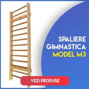 Model M3