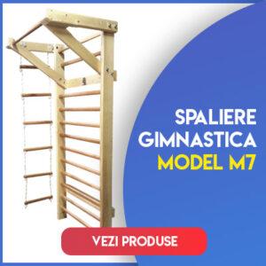 Model M7